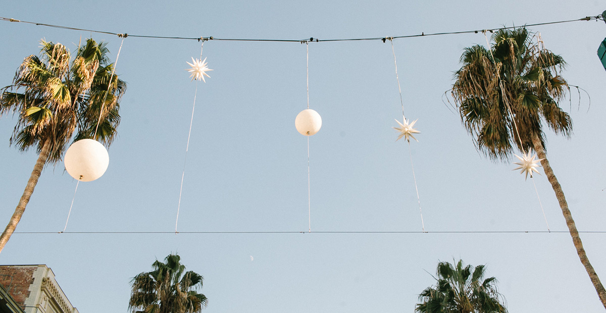 joeewong-cecilerandy-la-disney-california-engagement1