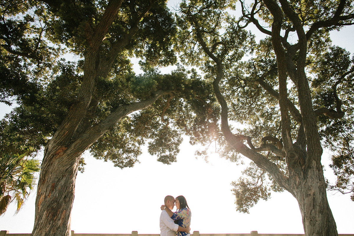 joeewong-cecilerandy-la-disney-california-engagement2