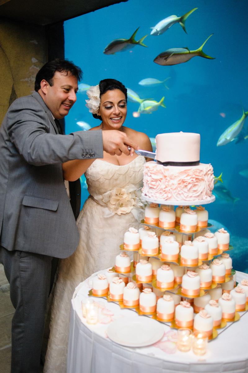 joeewong-sami-bahamas-wedding-084